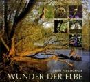 wunder_der_elbe
